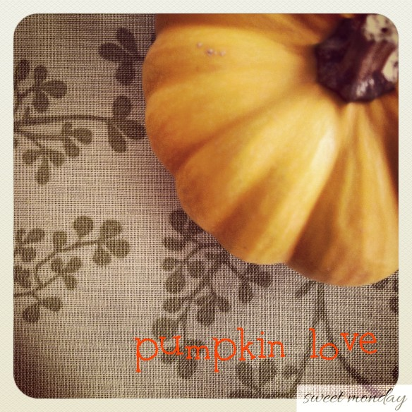 pumpkin love instagram 2012